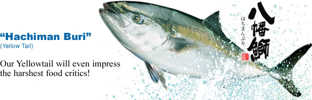 Marumi Marinefoods Co , Ltd -Products-Hachiman Buri